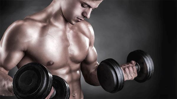 My Supps Bodybuilding