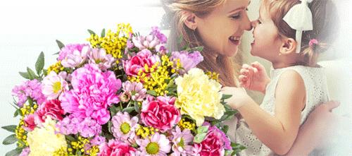 Valentins.de Blumen